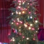 Ways to Earn More by Recycling Christmas Tree & Décor