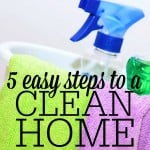 5 Easy Steps to a Clean Home
