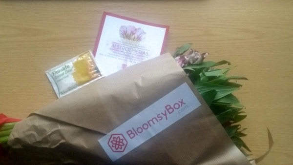 bloomsybox-out-of-package