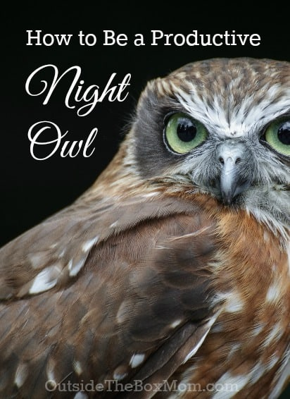 productive-night-owl-2