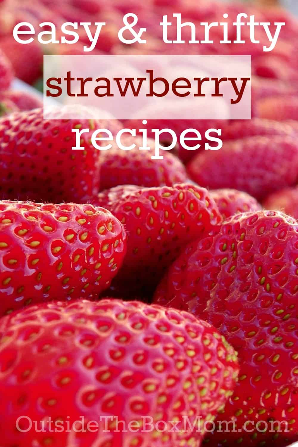 Are you looking for a thrifty strawberry recipe? Look no further. I'll tell you how to save money on strawberries, handle them, and get you started with a list of easy and thrifty strawberry recipes.