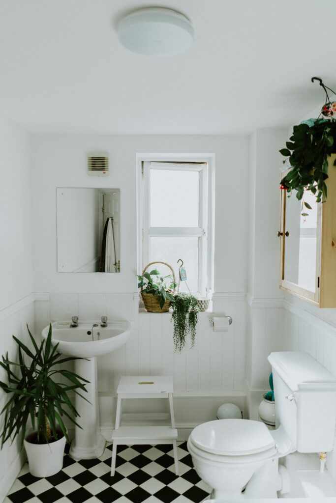 Your Guide to Choosing the Best Toilet for Your Home